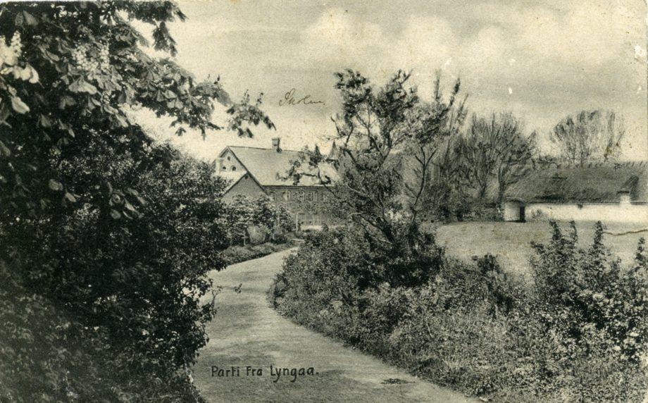 Postkort fra 1907 med vejen til skolen, skolen  og laden til Lyngågård