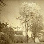 Vinterfoto med rim på træerne